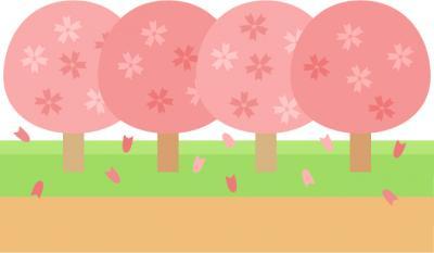 image 桜咲いたって聞いたんですけど…